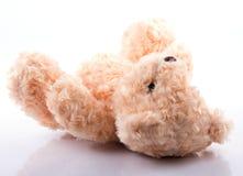 Gullig nallebjörn på vit Fotografering för Bildbyråer