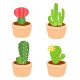 Gullig och färgrik kaktuskruka Royaltyfria Bilder