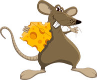Gullig ost för tecknad filmmuswhit Royaltyfri Foto