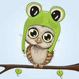 gullig owl Royaltyfria Bilder