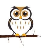 gullig owlvektor Arkivfoton