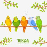 Gullig papegoja Royaltyfri Bild