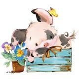gullig pig illustration för tecknad filmvattenfärgdjur Arkivfoton