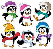 Gullig pingvinsamling Arkivfoton