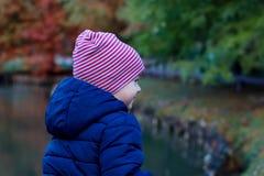 Gullig pojke för liten unge i varm höstkläder som har utomhus- gyckel arkivfoton