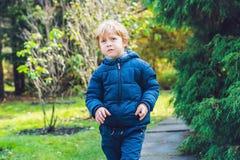 Gullig pojke för liten unge som tycker om höstdag Förskole- barn i färgrik höstlig kläder som lär att klättra och att ha gyckel i Fotografering för Bildbyråer