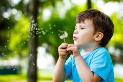 Gullig pojke med maskrosen utomhus arkivfoton