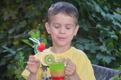 Gullig pojke som dricker den sunda smoothien för coctailfruktfruktsaft i sommar Lyckligt barn som tycker om den organiska drinken royaltyfri foto