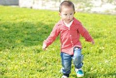 Gullig pojke som går på gräsmattan Royaltyfri Foto