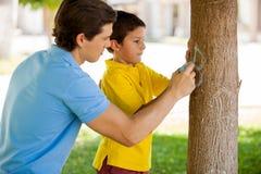 Gullig pojke som skriver hans namn på ett träd Arkivfoton