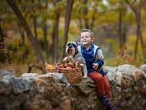 Gullig pys med en hund i nedgången fotografering för bildbyråer