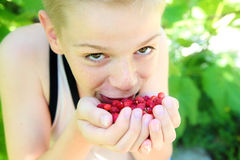 Gullig pys som äter en jordgubbe Fotografering för Bildbyråer
