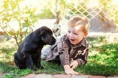 Gullig pys som knäfaller med hans valp labrador som ler på kameran Royaltyfria Bilder