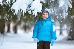 Gullig pys som leker på vinterskog Royaltyfria Bilder