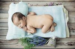Gullig pys som sover på filten Arkivbilder