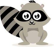 gullig raccoon Fotografering för Bildbyråer
