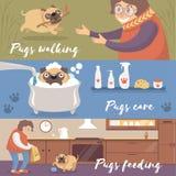 Gullig rolig mopshund i olika lägen, mops som går, omsorg och matande färgrika vektorillustrationer vektor illustrationer