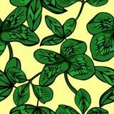 Gullig sömlös modell för vektor Ljus sommarväxt av släktet Trifolium vektor illustrationer