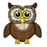 gullig seende owl Royaltyfri Fotografi