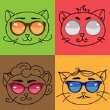 gullig set för katter Royaltyfri Fotografi