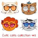 gullig set för katter Royaltyfri Bild