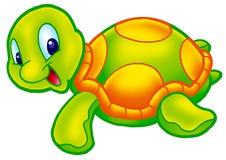 gullig sköldpadda Royaltyfria Bilder
