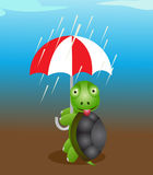 Gullig sköldpadda med paraplyet Royaltyfria Foton