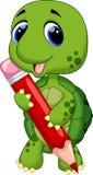 Gullig sköldpaddacaroon Arkivbild
