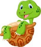 Gullig sköldpaddatecknad film Arkivfoton