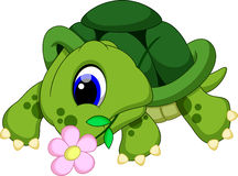 Gullig sköldpaddatecknad film Royaltyfri Bild