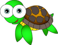 gullig sköldpadda Arkivbild