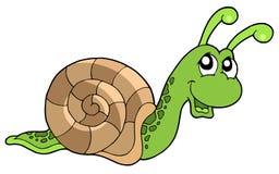 gullig snail Fotografering för Bildbyråer