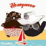 Gullig sommaraffischillustration med nätta kattpar på vacati royaltyfri illustrationer