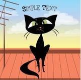 Gullig svart katt på taket Arkivfoto