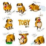 Gullig tecknad filmhund Toby. Uppsättning 1 Fotografering för Bildbyråer