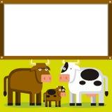 Gullig tecknad filmtjur, ko och kalv med utrymme Royaltyfri Fotografi
