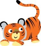 gullig tiger Arkivfoton
