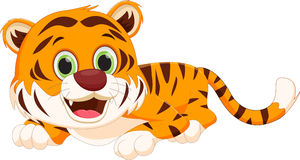 gullig tiger för tecknad film vektor illustrationer