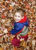 Gullig todderpojke som ler, upp når att ha hoppat i en hög av orange aut arkivbilder