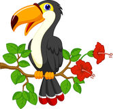 Gullig tukanfågeltecknad film vektor illustrationer