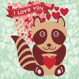 Gullig tvättbjörn med röd hjärta Valentin dagkort, hälsningkort Arkivfoto
