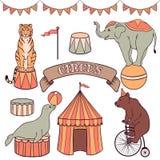 Gullig uppsättning för cirkusdjur Arkivfoto