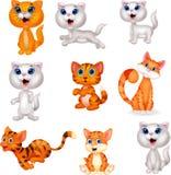 Gullig uppsättning för katttecknad filmsamling royaltyfri illustrationer