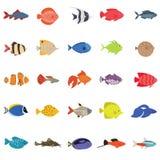 Gullig uppsättning för symboler för fiskvektorillustration Tropisk fisk, havsfisk, akvariefisk stock illustrationer