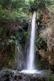 Gullig vattenfall i Alpujarra arkivbilder