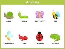 Gullig vektoruppsättning av djuret för ungar Arkivbild