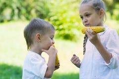 Gulliga barn som äter havre Arkivbild