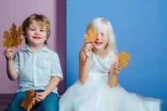 Gulliga barn som rymmer bladguldet på färgbakgrund Barn annonserar din produkt och tjänst Lyckligt litet fotografering för bildbyråer