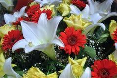 Gulliga blommor Royaltyfri Bild