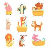 Gulliga djur som badar och tvättar sig i vatten, uppsättning för etikettdesign Hygien och omsorg, tecknad film specificerade illu Arkivfoton
